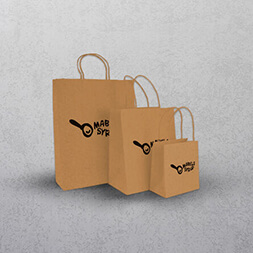 Natural Paper Bags - Twisted Handles