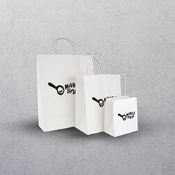 White Paper Bags - Twisted Handles