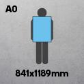 A0 (841 x 1189mm)