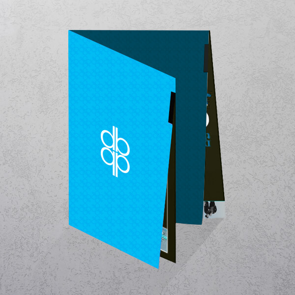 https://www.apprintable.com/images/products_gallery_images/Folded-Leaflets-Flyer-Printing-Apprintable-Cross-Fold.jpg