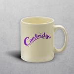 Apprintable Ivory Standard Mug